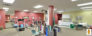 Plymouth Physical Therapy - Novi